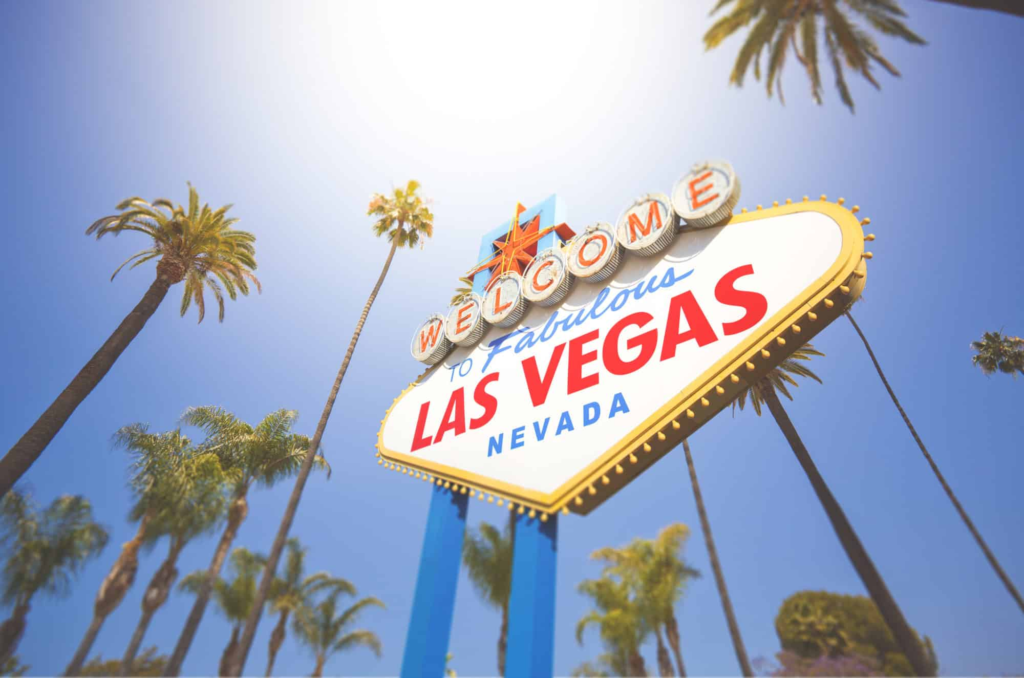 Its Vegas Baby! WSWA Convention is next week